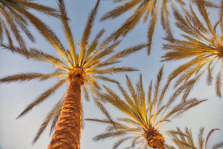 sitios en Baja California