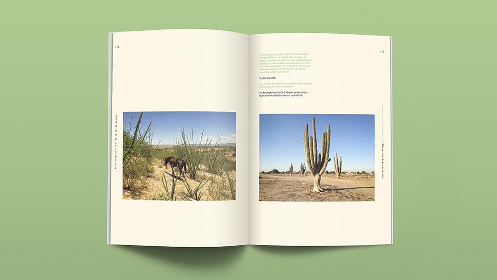 Los Desiertos de Sonora, Altair Magazine